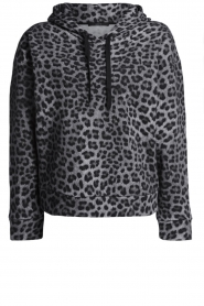 Set |  Sweater with leopard print Ria | animal print  | Picture 1