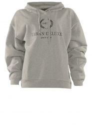 Set |  Sweater with print Urban | grey  | Picture 1