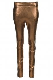 Dante 6 |  Metallic leather pants Lebon | metallic  | Picture 1