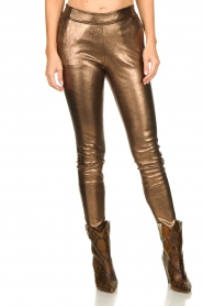 Dante 6 |  Metallic leather pants Lebon | metallic  | Picture 2
