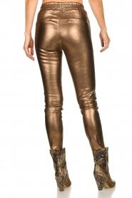 Dante 6 |  Metallic leather pants Lebon | metallic  | Picture 5