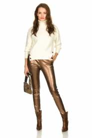 Dante 6 |  Metallic leather pants Lebon | metallic  | Picture 6