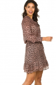 Set |  Blouse with panther print Panter | pink  | Picture 4