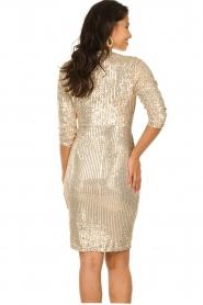 Set    Sequin dress Lulu   gold    Picture 7