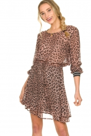 Set    Skirt with leopard print Zara   pink    Picture 2