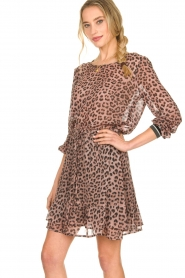 Set |  Skirt with leopard print Zara | pink  | Picture 5