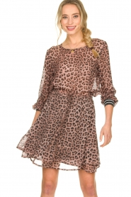 Set |  Skirt with leopard print Zara | pink  | Picture 4