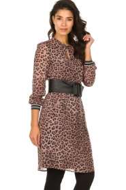 Set |  Dress with panther print Panter | pink  | Picture 4