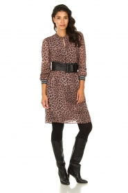 Set |  Dress with panther print Panter | pink  | Picture 6