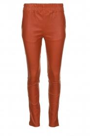 Est-Seven |  Leather leggings Amber | burned orange  | Picture 1