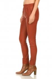 Est-Seven |  Leather leggings Amber | burned orange  | Picture 5