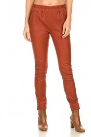 Est-Seven |  Leather leggings Amber | burned orange  | Picture 4
