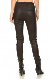 Est-Seven |  Leather legging  Amber | brown  | Picture 5
