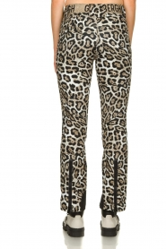 Goldbergh |  Leopard ski pants Roar | animal  | Picture 5
