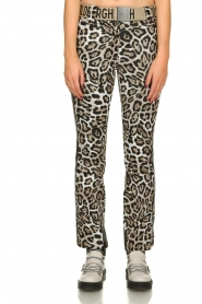Goldbergh |  Leopard ski pants Roar | animal  | Picture 2