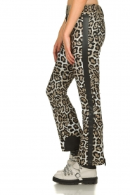 Goldbergh |  Leopard ski pants Roar | animal  | Picture 4