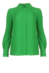 ELISABETTA FRANCHI |  Blouse with chic collar Verde | green  | Picture 1