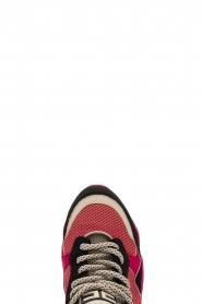 ELISABETTA FRANCHI |  Chunky sneaker Gelato | pink  | Picture 5