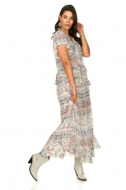 IRO |  Maxi dress with print Lanty | white  | Picture 3