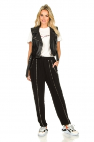 IRO |  Pants with metallic details Egini | black  | Picture 3