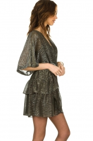 IRO |  Dress with lurex Wide | metallic  | Picture 4