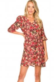 Freebird |  Print dress Irena | red  | Picture 2