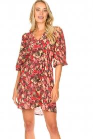 Freebird |  Print dress Irena | red  | Picture 5