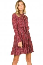 Freebird    Print dress Elia   red    Picture 2