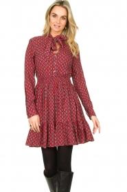 Freebird |  Print dress Elia | red  | Picture 2