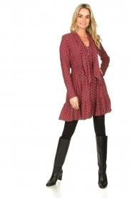 Freebird |  Print dress Elia | red  | Picture 3