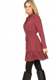 Freebird |  Print dress Elia | red  | Picture 6