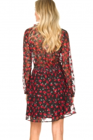 Freebird |  Print dress Gianna | red  | Picture 6