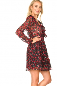 Freebird |  Print dress Gianna | red  | Picture 5