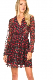Freebird |  Print dress Gianna | red  | Picture 4