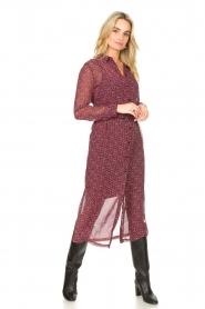 Freebird    Printed midi dress Harper   multi    Picture 4