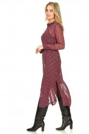 Freebird    Printed midi dress Harper   multi    Picture 5