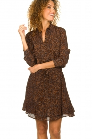 Set |  Skirt with leopard print Tigra | brown  | Picture 2