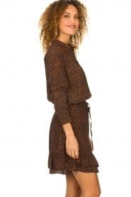 Set |  Skirt with leopard print Tigra | brown  | Picture 4