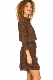 Set |  Skirt with leopard print Tigra | brown  | Picture 5