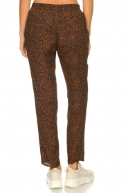 Set |  Pants with leopard print Tigra | brown  | Picture 5