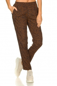 Set |  Pants with leopard print Tigra | brown  | Picture 2