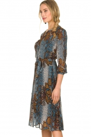 Set |  Dress with snake print Sizzly | blue  | Picture 5