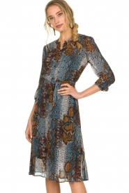 Set |  Dress with snake print Sizzly | blue  | Picture 2