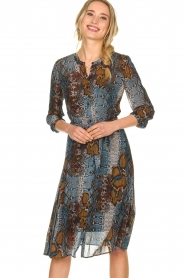 Set |  Dress with snake print Sizzly | blue  | Picture 4