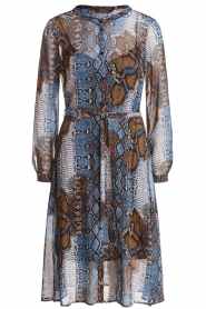 Set |  Dress with snake print Sizzly | blue  | Picture 1