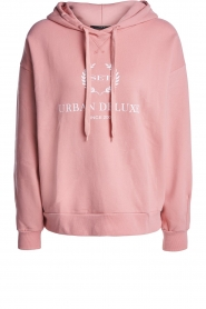 Set |  Sweater with print Urban | pink  | Picture 1
