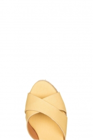 Castaner :  Wedges Blaudell | yellow - img5