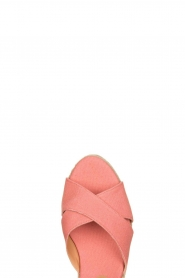 Castaner |  Wedges Blaudell | pink  | Picture 5