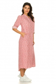 JC Sophie |  Printed maxi dress Christen | pink  | Picture 3