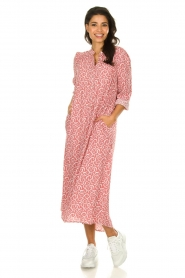 JC Sophie |  Printed maxi dress Christen | pink  | Picture 2